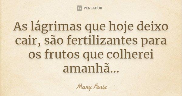 As lágrimas que hoje deixo cair, são fertilizantes para os frutos que colherei amanhã...... Frase de Mary Fenix.