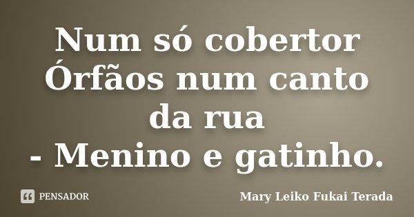 Num só cobertor Órfãos num canto da rua - Menino e gatinho.... Frase de Mary Leiko Fukai Terada.