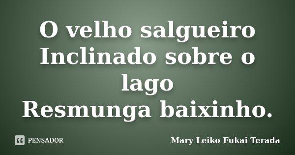 O velho salgueiro Inclinado sobre o lago Resmunga baixinho.... Frase de Mary Leiko Fukai Terada.