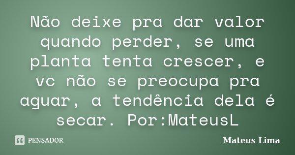 Não Deixe Pra Dar Valor Quando Perder Mateus Lima