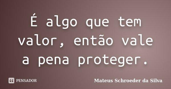 É algo que tem valor, então vale a pena proteger.... Frase de Mateus Schroeder da Silva.