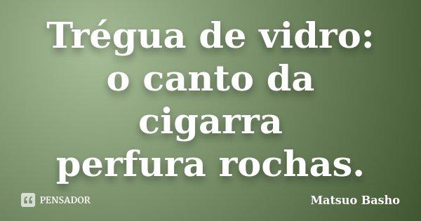 Trégua de vidro: o canto da cigarra perfura rochas.... Frase de Matsuo Bashô.