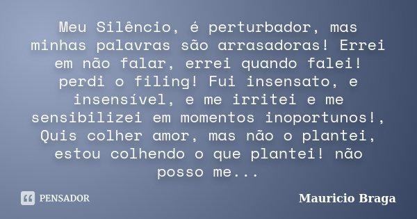 Meu Silêncio, é perturbador, mas minhas palavras são arrasadoras! Errei em não falar, errei quando falei! perdi o filing! Fui insensato, e insensível, e me irri... Frase de Mauricio Braga.