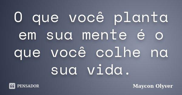 O que você planta em sua mente é o que você colhe na sua vida.... Frase de Maycon Olyver.
