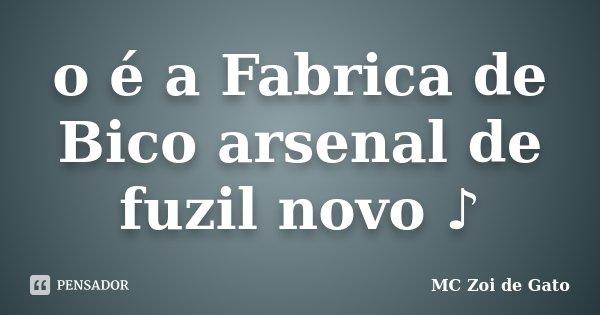 O é A Fabrica De Bico Arsenal De Fuzil Mc Zoi De Gato