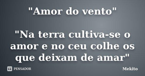 """""""Amor do vento"""" """"Na terra cultiva-se o amor e no ceu colhe os que deixam de amar""""... Frase de Mekito."""