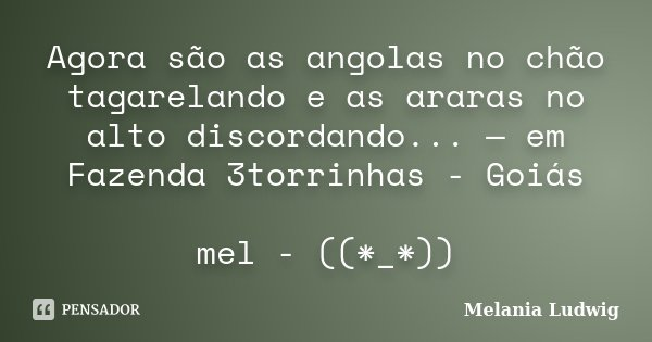 Agora são as angolas no chão tagarelando e as araras no alto discordando... — em Fazenda 3torrinhas - Goiás mel - ((*_*))... Frase de melania ludwig.