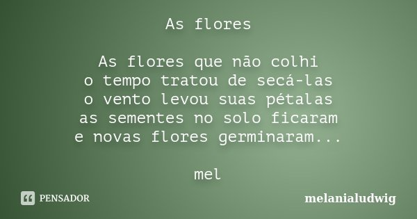 As flores As flores que não colhi o tempo tratou de secá-las o vento levou suas pétalas as sementes no solo ficaram e novas flores germinaram... mel... Frase de melanialudwig.