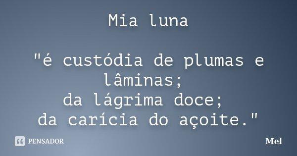 """Mia luna """"é custódia de plumas e lâminas; da lágrima doce; da carícia do açoite.""""... Frase de Mel."""
