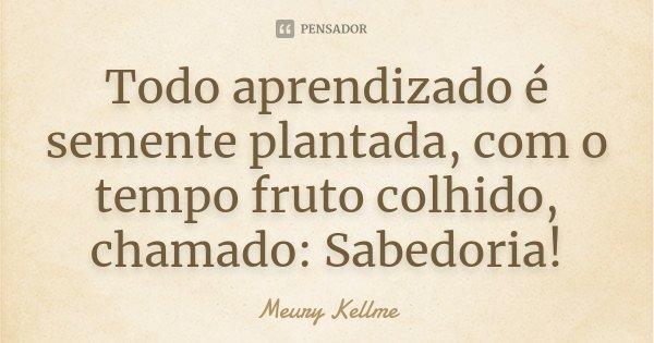Todo aprendizado é semente plantada, com o tempo fruto colhido, chamado: Sabedoria!... Frase de Meury Kellme.