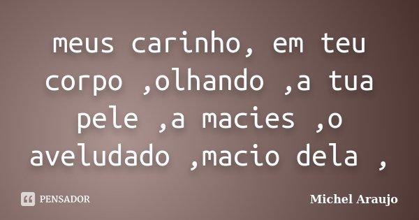 meus carinho, em teu corpo ,olhando ,a tua pele ,a macies ,o aveludado ,macio dela ,... Frase de Michel Araujo.