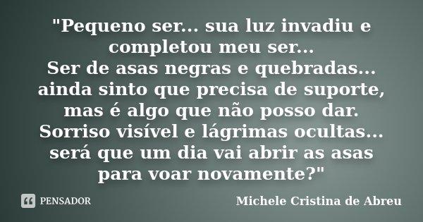Pequeno Ser Sua Luz Invadiu E Michele Cristina De Abreu