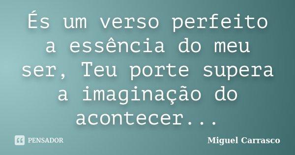 És um verso perfeito a essência do meu ser, Teu porte supera a imaginação do acontecer...... Frase de Miguel Carrasco.