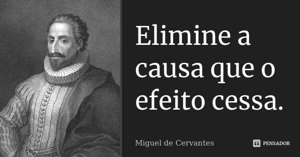 Elimine a causa que o efeito cessa.... Frase de Miguel de Cervantes.