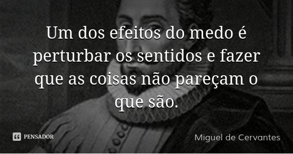 Um dos efeitos do medo é perturbar os sentidos e fazer que as coisas não pareçam o que são.... Frase de Miguel de Cervantes.