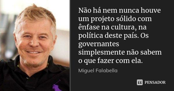 Não há nem nunca houve um projeto sólido com ênfase na cultura, na política deste país. Os governantes simplesmente não sabem o que fazer com ela.... Frase de Miguel Falabella.