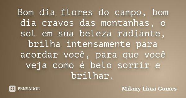Bom Dia Flores Do Campo Bom Dia Cravos Milany Lima Gomes