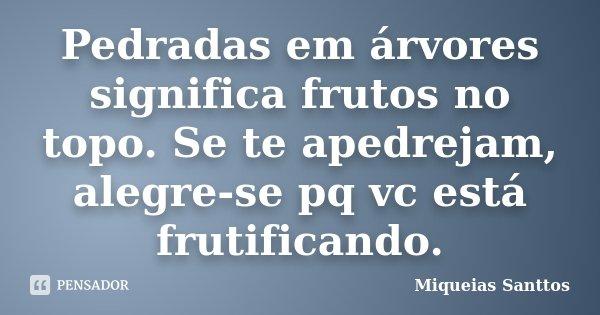Pedradas em árvores significa frutos no topo. Se te apedrejam, alegre-se pq vc está frutificando.... Frase de Miqueias Santtos.