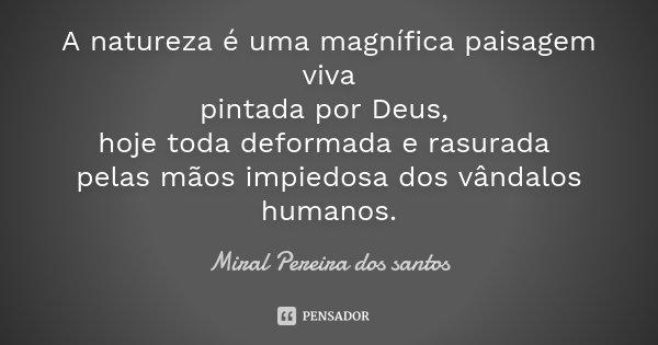 A Natureza é Uma Magnífica Paisagem Miral Pereira Dos Santos