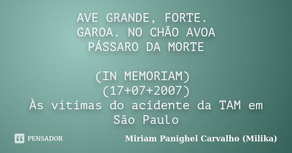 AVE GRANDE, FORTE. GAROA. NO CHÃO AVOA PÁSSARO DA MORTE (IN MEMORIAM) (17+07+2007) Às vítimas do acidente da TAM em São Paulo... Frase de Miriam Panighel Carvalho (Milika).