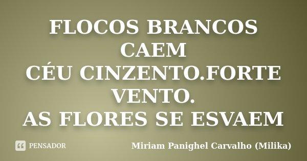 FLOCOS BRANCOS CAEM CÉU CINZENTO.FORTE VENTO. AS FLORES SE ESVAEM... Frase de Miriam Panighel Carvalho (Milika).