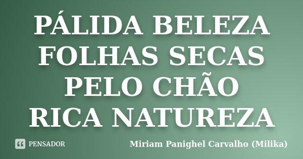 PÁLIDA BELEZA FOLHAS SECAS PELO CHÃO RICA NATUREZA... Frase de Miriam Panighel Carvalho (Milika).