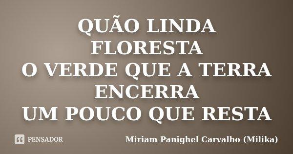 QUÃO LINDA FLORESTA O VERDE QUE A TERRA ENCERRA UM POUCO QUE RESTA... Frase de Miriam Panighel Carvalho (Milika).