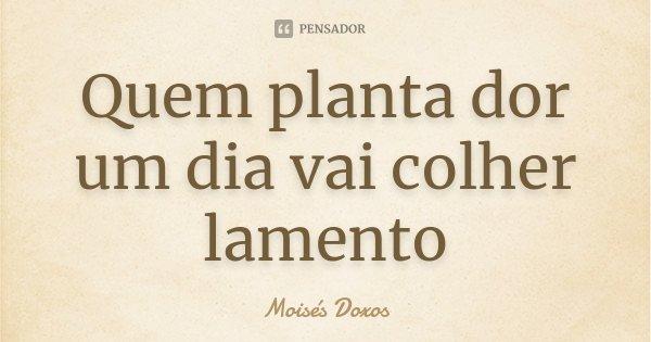 Quem planta dor um dia vai colher lamento... Frase de Moisés Doxos.