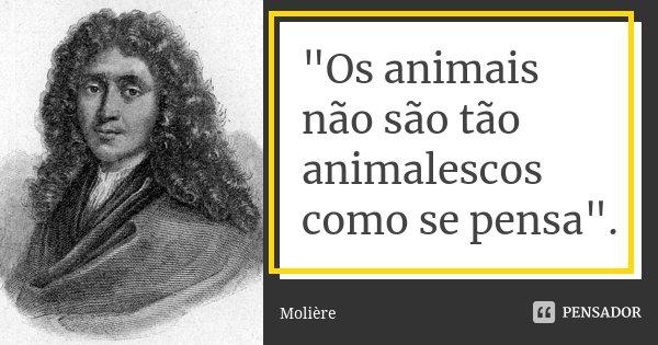 """""""Os animais não são tão animalescos como se pensa"""".... Frase de Molière."""