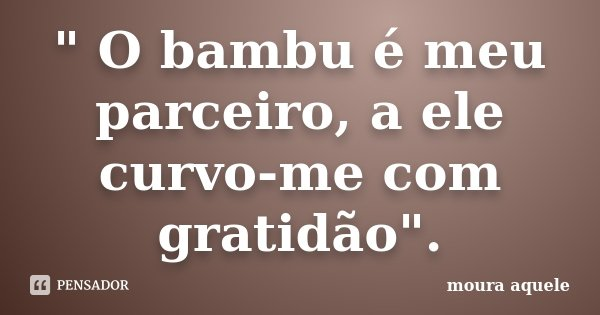""""""" O bambu é meu parceiro, a ele curvo-me com gratidão"""".... Frase de Moura aquele."""