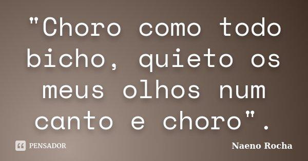 """Choro como todo bicho, quieto os meus olhos num canto e choro"".... Frase de Naeno Rocha."