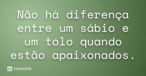 Não há diferença entre um sábio e um tolo quando estão apaixonados.... Frase de Desconhecido.
