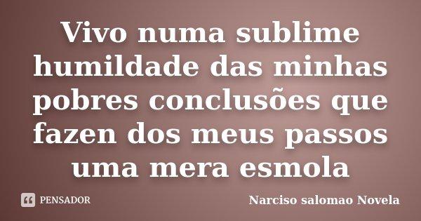Vivo numa sublime humildade das minhas pobres conclusões que fazen dos meus passos uma mera esmola... Frase de Narciso salomao Novela.