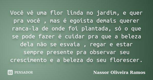 Você Vê Uma Flor Linda No Jardim E Nassor Oliveira Ramos