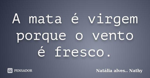 A mata é virgem porque o vento é fresco.... Frase de Natalia alves...Nathy.