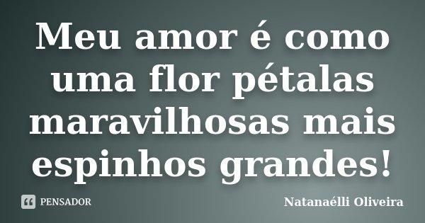Meu amor é como uma flor pétalas maravilhosas mais espinhos grandes!... Frase de (Natanaélli Oliveira).