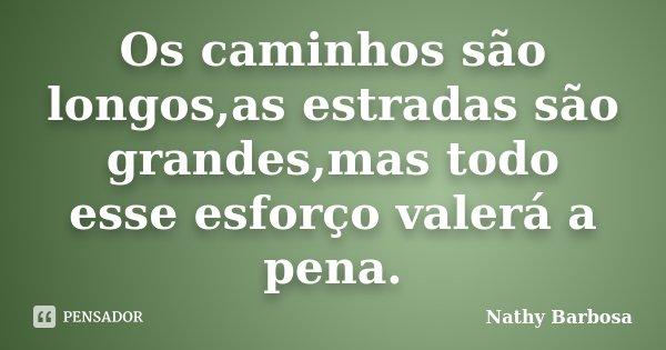Os caminhos são longos,as estradas são grandes,mas todo esse esforço valerá a pena.... Frase de Nathy Barbosa.