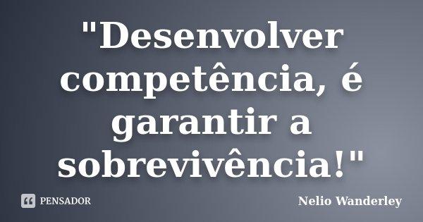 """""""Desenvolver competência, é garantir a sobrevivência!""""... Frase de Nélio Wanderley."""