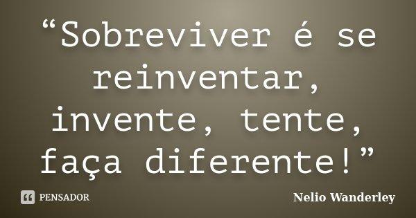 """Sobreviver é se reinventar, invente, tente, faça diferente!""... Frase de Nélio Wanderley."