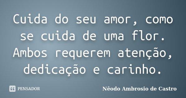 Cuida do seu amor, como se cuida de uma flor. Ambos requerem atenção, dedicação e carinho.... Frase de Nêodo Ambrosio de Castro.