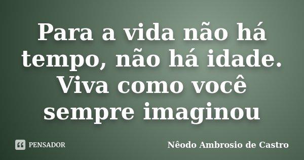 Para a vida não há tempo, não há idade. Viva como você sempre imaginou... Frase de Nêodo Ambrosio de Castro.