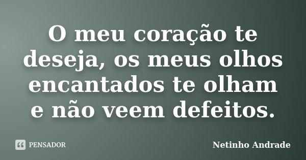 O meu coração te deseja, os meus olhos encantados te olham e não veem defeitos.... Frase de Netinho Andrade.