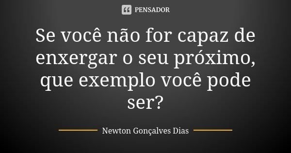 Se você não for capaz de enxergar o seu próximo, que exemplo você pode ser?... Frase de Newton Gonçalves Dias.