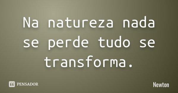 Na natureza nada se perde tudo se transforma.... Frase de Newton.