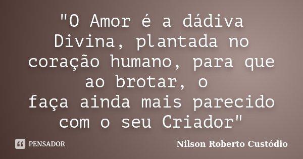 """""""O Amor é a dádiva Divina, plantada no coração humano, para que ao brotar, o faça ainda mais parecido com o seu Criador""""... Frase de Nilson Roberto Custódio."""