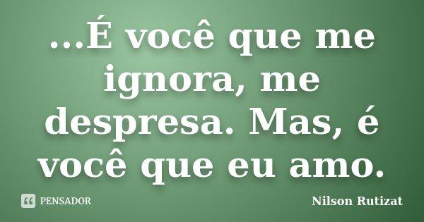 ...É você que me ignora, me despresa. Mas, é você que eu amo.... Frase de Nilson Rutizat.