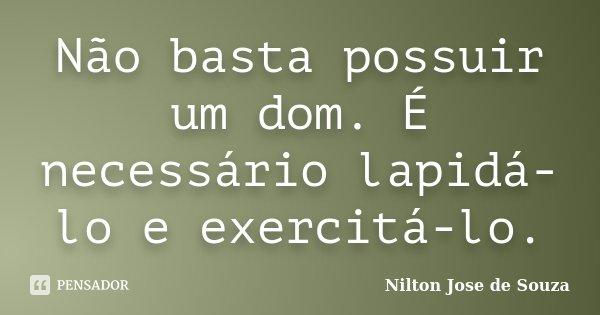 Não basta possuir um dom. É necessário lapidá-lo e exercitá-lo.... Frase de Nilton Jose de Souza.
