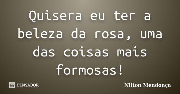 Quisera eu ter a beleza da rosa, uma das coisas mais formosas!... Frase de Nilton Mendonça.