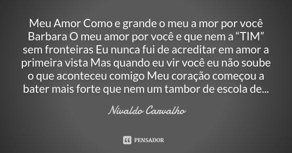 """Meu Amor Como e grande o meu a mor por você Barbara O meu amor por você e que nem a """"TIM"""" sem fronteiras Eu nunca fui de acreditar em amor a primeira vista Mas ... Frase de Nivaldo Carvalho."""