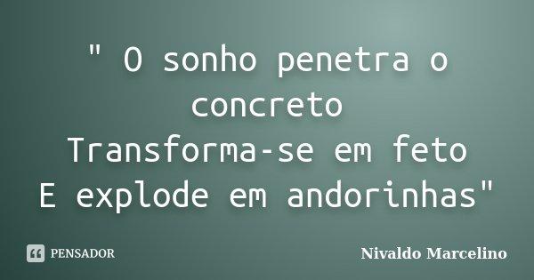 """"""" O sonho penetra o concreto Transforma-se em feto E explode em andorinhas""""... Frase de Nivaldo Marcelino."""